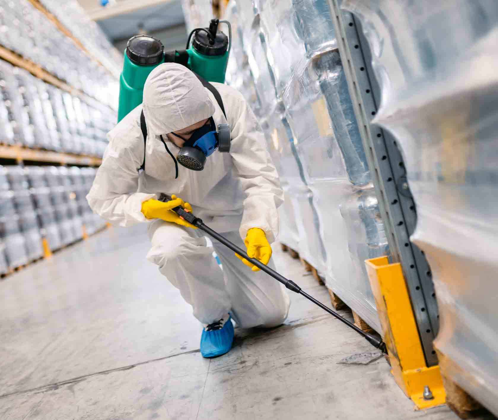 Asbestos Is Harmful to Our Environment
