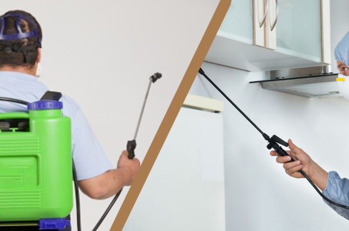 Using Pest Control Products
