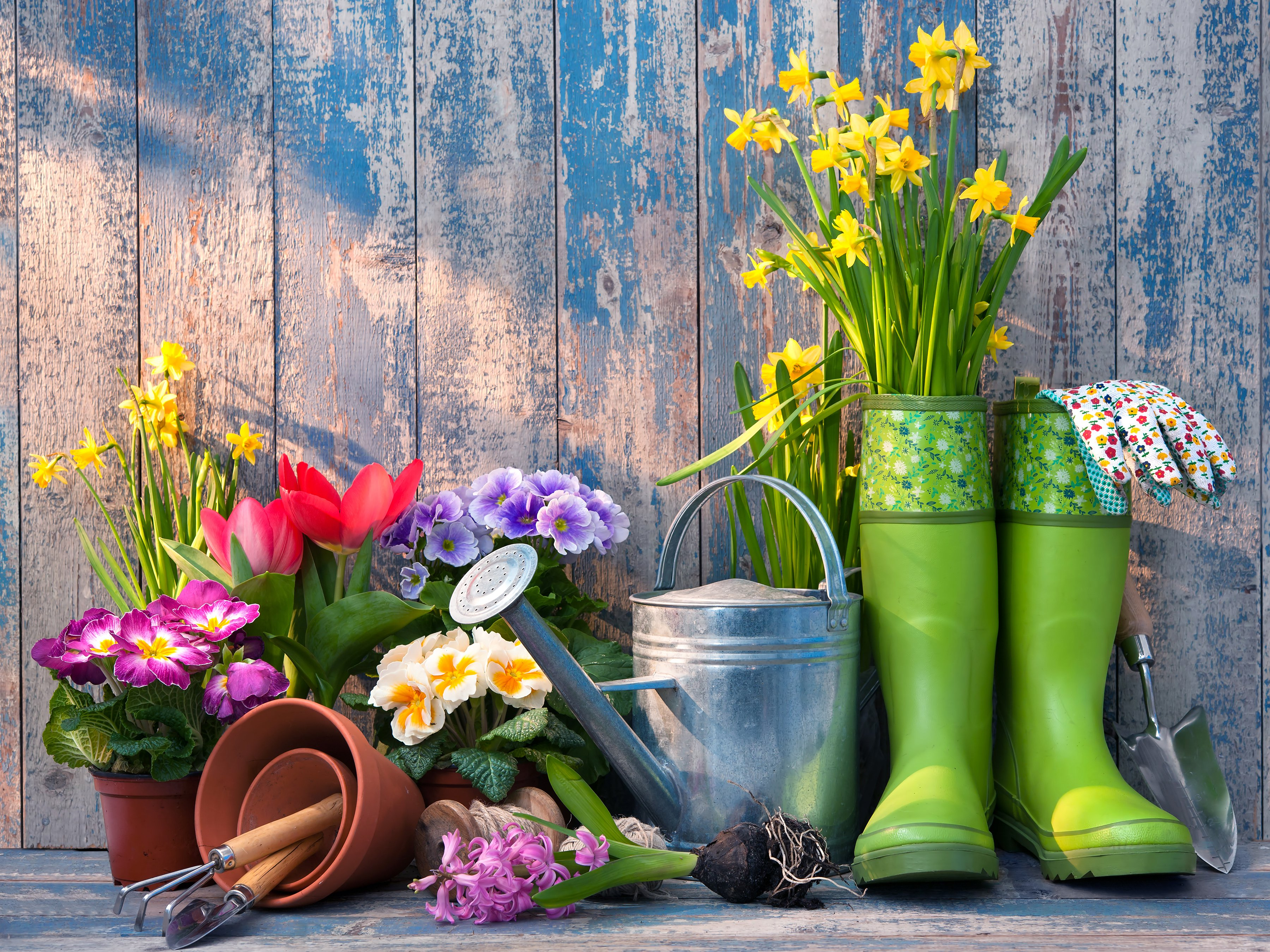 Why Is It So Important To Maintain Your Gardening Tools?