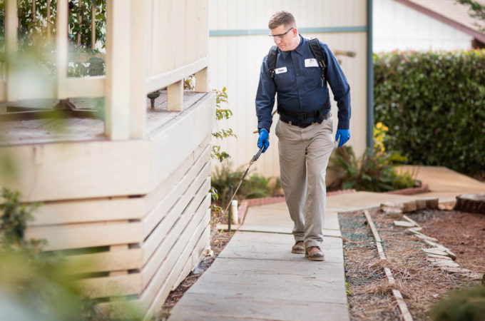 Your Choices On Pest Management Strategies