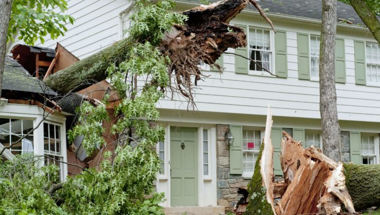 What Do You Do in the Event of Severe Home Damage?