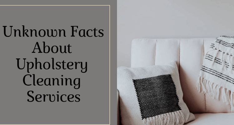 Facts About Carpet and Furniture Cleaning