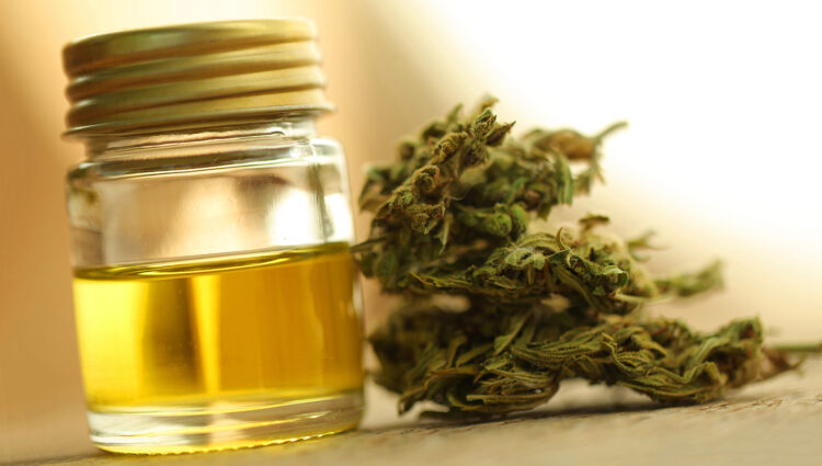 All That You Have to Know About the Usage of CBD and Honey Together